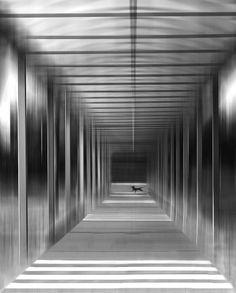 speed by Jutta Kerber on 500px