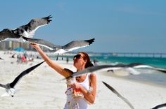 Feeding the birds on the beach in FL. (They LOVE Anndrea, she's a regular.)