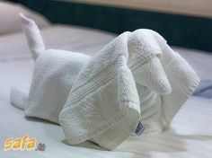 Dachshund towel folding! I so want to try this!