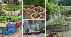 Top 19 Cool Ideas to Create a Round Garden Bed with Recycled Things - HomeDesignInspired Sloped Yard, Sloped Backyard, Backyard Seating, Backyard Landscaping, Garden Trees, Garden Paths, Patio Grande, Diy Garden Bed, Indoor Garden
