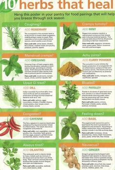 10 #Herbs that #Heal by Condition