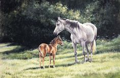 """Mother And Foal"" by Caroline Cook"