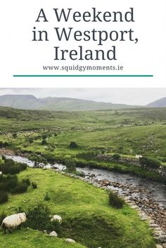 Planning a trip to Ireland? A weekend in Westport, in the West of Ireland is a must do! Read all about the Great Western Greenway cycle, where to stay and more!