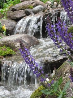 A picture in motion — this pondless waterfall is the scenic view from a NH kitchen window.