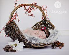 Baby Christmas Portraits. Wayyy too cute!