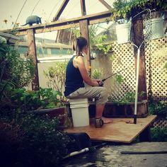 Criá tus propios peces y cultivá verduras dentro de una piscina en desuso: