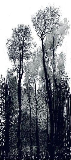 David Hockney Tall Black Trees 2008 inkjet printed computer drawing and photo collage on paper, mounted on dibond 93 X 41 Edition: 7 Landscape Drawings, Landscape Art, Landscape Paintings, Computer Drawing, Pop Art Movement, Jasper Johns, Black Tree, Photocollage, A Level Art