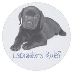 #Black Labrador Retriever Puppy Dog Blue Love Round Paper Coaster - #labrador #retriever #puppy #labradors #dog #dogs #pet #pets