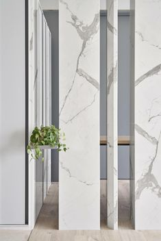 17 Ideas For House Entrance Lobby Foyers Divider Design, Partition Design, Entrance Design, House Entrance, Contemporary Home Decor, Modern Interior Design, Feature Wall Design, Living Room Partition, Wall Treatments