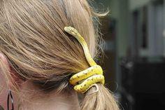Snake...