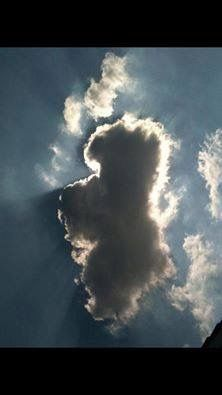 Westie Cloud...RIP Doozie and Howie.