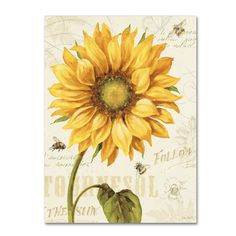 Under the Sun   by Lisa Audit.    sc 1 st  Pinterest & paper plate holders | paper plate holder not only decorative but ...