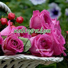 Good Afternoon, Good Morning, Greek Language, Rose, Flowers, Night, Buen Dia, Pink, Bonjour
