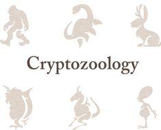 Cryptozoology on Behance