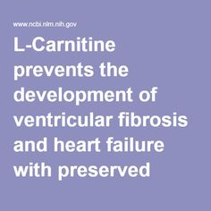 HEART VALVE RECONDITIONER -L-Carnitine prevents the development of ventricular fibrosis and heart failure with preserved ejection fraction in hypertensive heart disease. - PubMed - NCBI