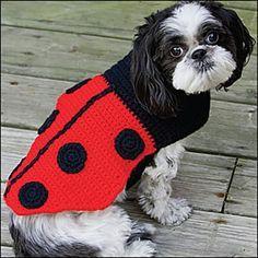 Crochet Pattern:Ladybug Dog Coat - Deb Richey in Crochet Magazine, Jan 2010 Visit Us To Know Dog Sweater Pattern, Crochet Dog Sweater, Dog Pattern, Crochet Pattern, Dog Crochet, Knitting Patterns, Chat Crochet, Crochet Mignon, Crochet Ladybug
