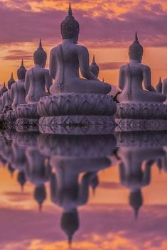 Spiritual/ Meditation journey through India. Top of my Bucket List:) Many Buddha statue on sunset, India (by Anek Suwannaphoom) Beautiful World, Beautiful Places, Beautiful Pictures, Temples, Laos, Reflection Pictures, Jolie Photo, Asia Travel, Thailand Travel