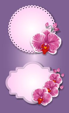 Flower and labels vector 05 - Vector Flower free download