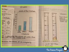 Matter Science Notebook Pics: Volume of Irregular Objects