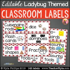 Ladybug themed editable Classroom Labels with Pictures