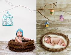 DIY birdhouses and painted branch photography props