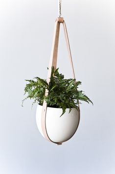 Ceiling Planter with Leather