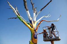Artists Emily Frankoski (left) and Dolores Bilke paint a tornado damaged tree in Joplin, on May 16, 2012. (Reuters/Eric Thayer)