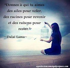 A Fleur de Mots: espoir Message Quotes, Hope Quotes, Words Of Hope, Great Words, Dalai Lama, Citations Blog, Reiki, Father Quotes, French Quotes