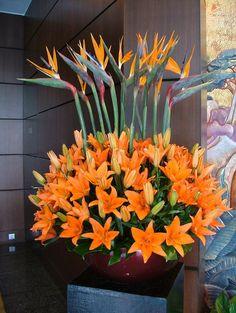 Centro de flores, aves del paraíso y lirio pequeño
