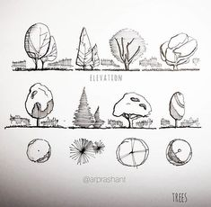 Sketches & Tips by _____________________________ . Use tag to get featured. Adult Tree House, Modern Tree House, Interior Architecture Drawing, Architecture Drawing Sketchbooks, Landscape Sketch, Landscape Drawings, Family Drawing, Drawing For Kids, Tree Branch Art