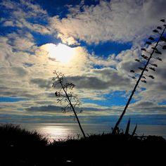 Praia da Rocha, Portimão   Algarve,  Portugal   #sunsets  #sunset  #paisagem  #landscape  #sea  #mar  #azul  #blue #goodafternoon  #phototheday  #photographysouls  #photographylover  #photografer  #fotografia #instaphotography  #travelling  #traveller #algarve  #portimao  #praiadarocha  #beach