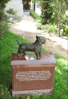 Monument to Toto at Hollywood's Forever Cemetery- Dedicated to the memory of the beloved Toto, originally named Terry, In 1945, owner & trainer Carl Spitz buried the Cairn Terrier on his ranch in Studio City. The 1958 construction of the Ventura Freeway destroyed her resting place.