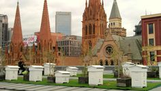 Federation Square Bee Village #Melbourne #Rooftop #Beekeeping