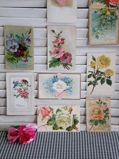 i need old shutters for my craft room walls