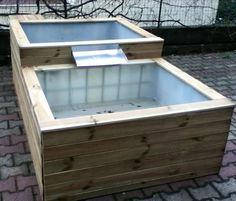 Salut à tous ! Après de longues semaines d'absence, je reviens avec mon nouveau bassin, inspiré de celui de Patrice_b ( http://www.aquamazonia.com/t1448-le-peti