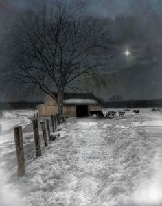 silent night - holy night .....there is also God's star....