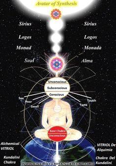 Intellectual submitted reiki for beginners Chakra Mantra, Chakra Meditation, Kundalini Yoga, Chakra Healing, 7 Chakras, Reiki Master, Reiki Courses, Bio Vegan, Spiritual Pictures