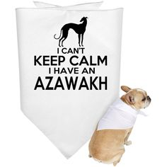 I Cant Keep Calm I Have An Azawakh Dog Bandanas
