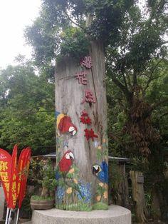 櫻花鳥森林,來第二露