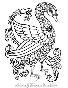 """smallswan 
