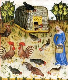 Poultry keeping. Tacuinum sanitatis, 14 Century, Vienna Austrian National Library, Cod Vindob. P n 2644, northern Italy in 1390, folio 65r.