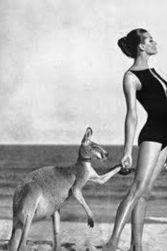 hand in hand with a kangaroo