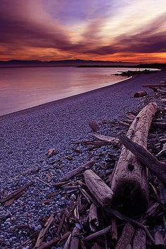 Wooden Beach iPhone Wallpaper | iDesign * iPhone
