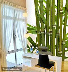 Fototapeten Bambus und Steine