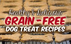 Healthy & Delicious Grain-Free Dog Treat Recipes | eBay