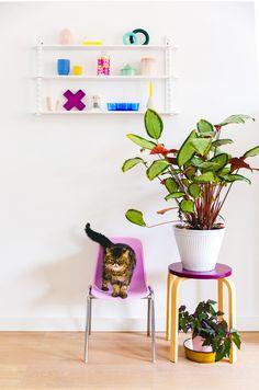 roze-kinderstoel-wandrek-accessoires