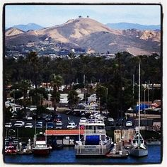 Our beautiful Ventura Harbor and Famous Two Trees ...great spot for Happy Hour - have the happy part just need to get to the hour.. :)  Photo Credit: Kate Dunbar