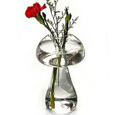 Glass Mushroom Shaped Plant Flower Vase Water Hydroponic Container Desk Bonsai Home Office Wedding Decoration Girl Gift * Click image to review more details.