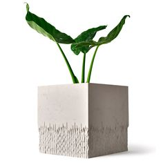 Philippe Malouin experiments with Caesarstone to create collection of planters