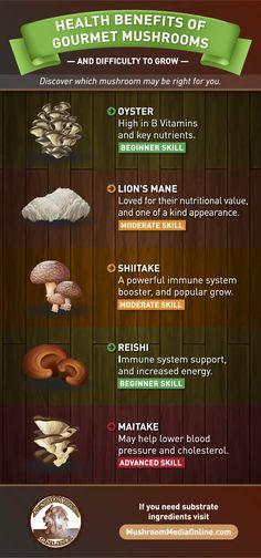 Health And Nutrition, Health And Wellness, Health Tips, Whole Food Recipes, Vegan Recipes, Potato Recipes, Health Benefits Of Mushrooms, Growing Mushrooms, Turmeric Tea